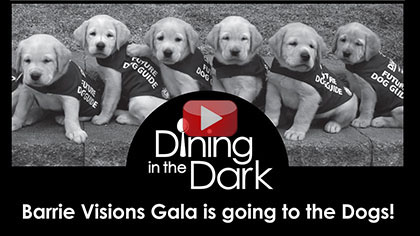 Dining in the Dark - Barrie Visions Gala in support of Lions Foundation of Canada Dog Guides